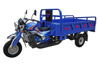 Hot sale in africa 3 wheel motorcycle and cargo tricycle with competitive price