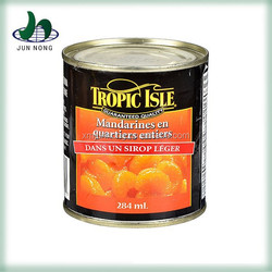 Fresh sweet delicious canned russian citrus fruits importers