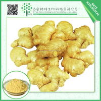Latest Style High Quality Herbal Extract / pure fresh ginger extract