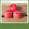 Shandong Yantai Fuji Apple Fruit