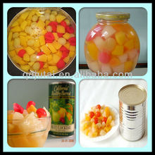 Chinese High quality Canned Mixed Fruits