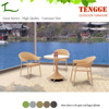 TG15-0003 Simple style plastic rattan wicker furniture