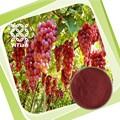 100% Natural de uva orgánica polvo de pulpa