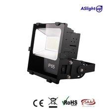 Latest super quality Hv driverless led economic 10-100w led flood light ip65