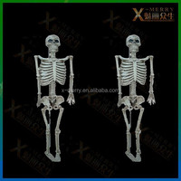 X-MERRY Raw and Bloody Bones Adujusable Skeleton Frame Halloween Prop/Toy Haunted House Decor Latex Prop To Set The Scary Mood