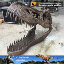 N-p-y-5-my dino dinosaurio de simulación esqueleto réplicas exposición cabeza fósil