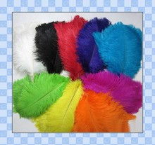 party decoration mixed colors for flag ostrich feather for wedding pens