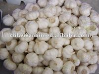 garlic price in china 2012