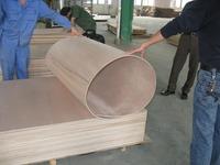 Mahogany veneer plywood by philippine mahogany/for mahogany chippendale chair