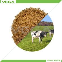 probiotic drink powder bacillus subtilis bacillus licheniformis clostridium butyricum China manufacturer