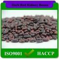 160-180pcs/100g de alta calidad de los tipos de color rojo oscuro haba de riñón