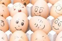Egg Albumen Powder