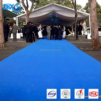 DBJX Indoor outdoor carpet lowes