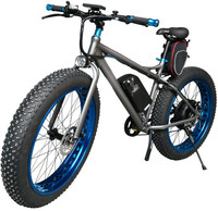 Fat tyre Powered Li-lion hub motor two wheel electric motor bike in China