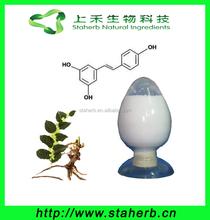 Factory direct sale free samples Polygonum Cuspidatum Extract trans resveratrol