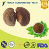 Alibaba China Anti-cancer product Phellinus igniarius extract 2%-20% Triterpene