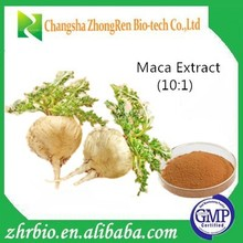 GMP factory 100% Pure Natural Maca Extract 10:1