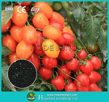 The best alternative lime nitrogen RSSC - special greenhouse crops