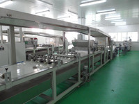 full set and multi-functional swiss roll/mini roll cake production line made in China