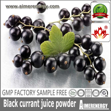 Factory sample free blackcurrant juice powder for antioxidant ingredient