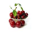 2015 venda quente curto cheongsam cereja frutas vendas