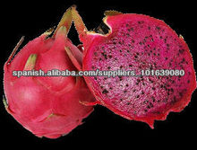 FRESH DRAGON FRUIT/ PITAYA/ PIHATAYA