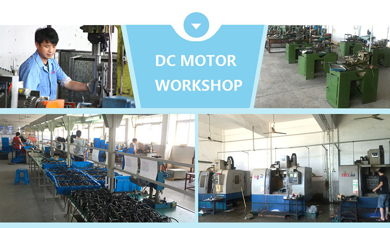 high quality holly best dc compound motor for new energy electric car