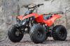 Top Selling High Quality ATV 110cc/125cc Quad For Sale / SQ- ATV008