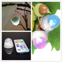 Remote Controlled Battery Operated Small Led Berries Waterproof Fairy Lights LD300