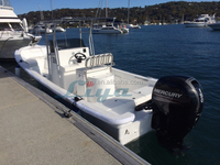Liya 7.6m fiberglass work boat small cargo ship for sale