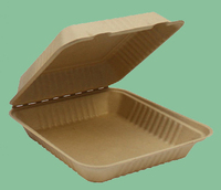 sugarcane pulp take away recycled paper/insulated hot food containers
