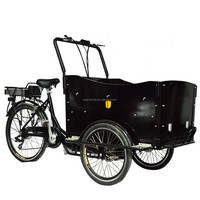 CE cheap adult three wheel family electric pedal cargo trike bicycle