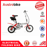 36v 250w high quality easy rider powerful ebike made in china,Hot sell 250w 36v green energy adult fold ebike made in China