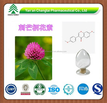 GMP factory supply Hot sale Red clover P.E.Isoflavone 40%