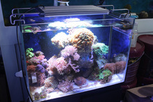 no direct radiation, ultraviolet (UV) Infrared (IR) pollution best for Coral Reef Growing led aquarium light