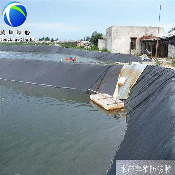 Fish farms estanque liner alta densidad hdpe polietileno for Estanque polietileno