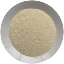 Dehydrated Onion (Red Onion Powder)