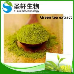 Anti-oxidants ingredients green tea extract