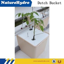 Dutch bucket hydroponic system
