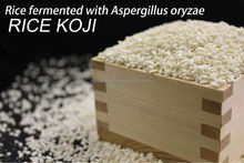 Japanese traditional fermented food ingredient - rice koji which can use for brewing sake in a brewery
