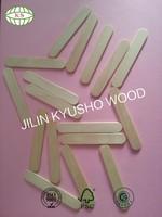 Made in China birch wood craft house ice cream stick