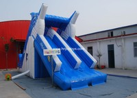 Newest Designed Dolphin inflatable stair slide, inflatable double lane slip slide for sale