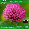 Hot Sale Trifolium pretense Powder,Trifolium pretense Flower Powder,Trifolium pretense Plant Powder