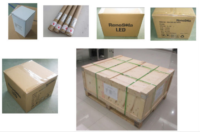 TUV CE Listed T8 24W Frosted LED Tube with 5 Years Warranty