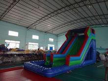 shark water slide , LZ-B3219 2013 fun inflatable water slide