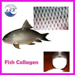 pure marine 100% fish collagen powder