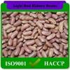 200pcs-240pcs/100g Farm Produce Light Red Kidney Beans Delicate Flavor,Common Cultivation Type Bulk Red Kidney Beans