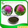 Women Health Red Clover Extract Trifolium Pratense L.