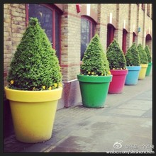 Lighted ornamental colorful cheap plastic flower pots wholesale