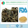 Hot sale high quality dried earthworm extract lumbricus rubellus